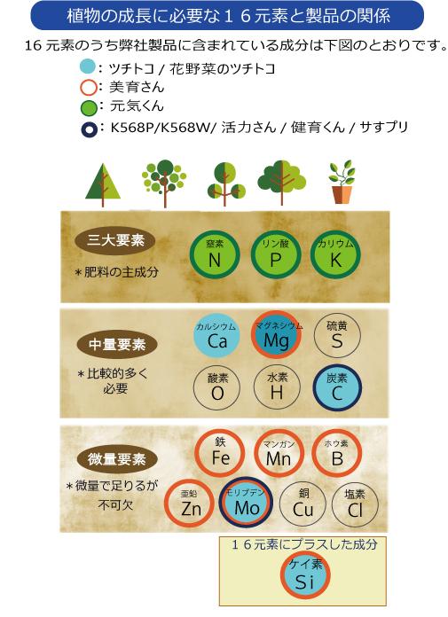 植物必須成分 三大要素 中量要素 微量要素
